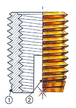 photo intervis 2